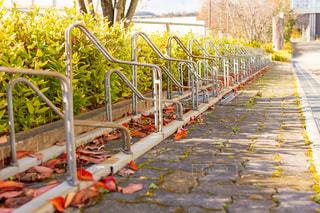 自転車置き場の写真・画像素材[2953364]