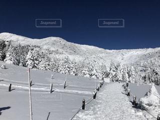 雪に覆われた山道の写真・画像素材[1803566]