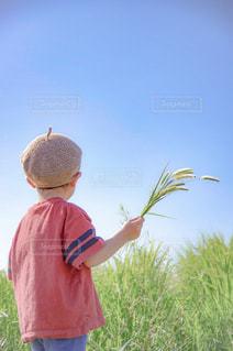 空を眺める子供の写真・画像素材[1803980]