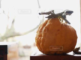 大きな柚子の写真・画像素材[1812756]