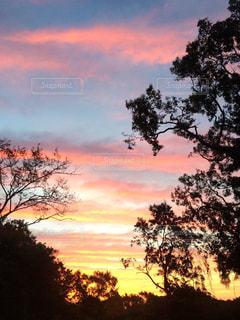 朝焼けに染まる空の写真・画像素材[1825750]