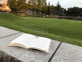 公園で読書の写真・画像素材[2383973]