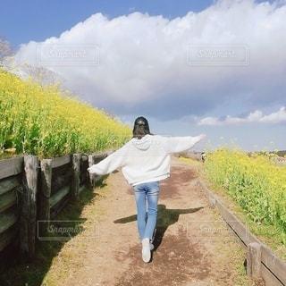 春!菜の花!空!幸せ!!の写真・画像素材[2978264]