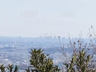 高尾山の写真・画像素材[1806885]