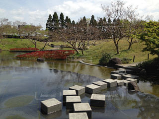 池の写真・画像素材[1811670]