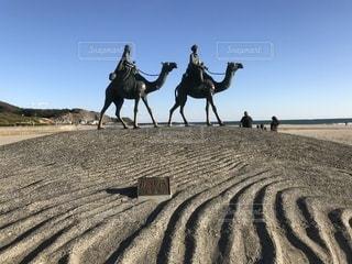 砂漠とラクダの写真・画像素材[1822270]