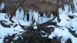 氷柱の写真・画像素材[1811586]