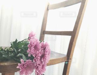 イスの上の紫色の花束の写真・画像素材[1811388]