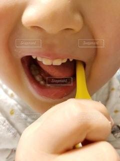 子どもの歯磨きの写真・画像素材[1843329]