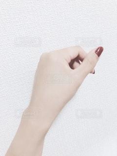 手の写真・画像素材[2082284]