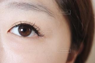 女性の目元の写真・画像素材[2405824]