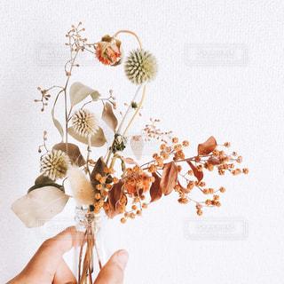 花を持っている人の写真・画像素材[1813658]