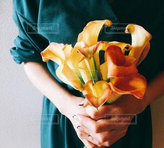 花束の写真・画像素材[1813673]
