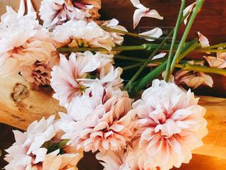 近くの花のアップの写真・画像素材[1814975]