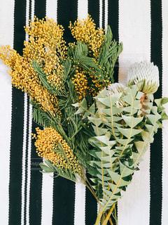 近くの花のアップの写真・画像素材[1861557]