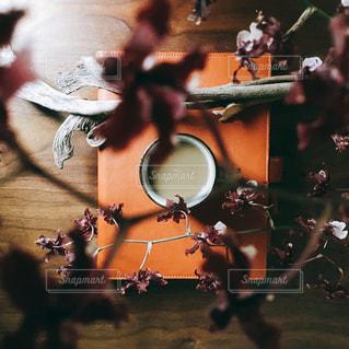 花のクローズアップの写真・画像素材[2140510]