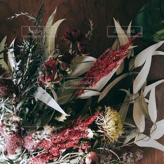 花のクローズアップの写真・画像素材[2140512]