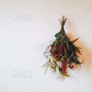 花のクローズアップの写真・画像素材[2141268]