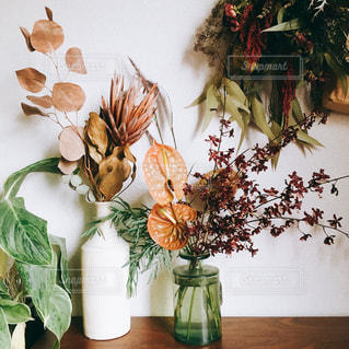花々の写真・画像素材[2149914]