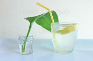 大きな葉っぱとレモン-5の写真・画像素材[3245219]