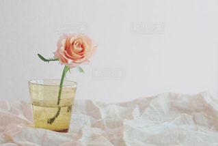 テーブルの上に花の花瓶の写真・画像素材[3289151]