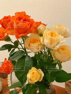 花の写真・画像素材[2159123]