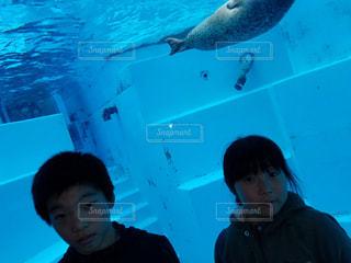 水族館と子供の写真・画像素材[1826515]