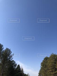 空の写真・画像素材[1818291]