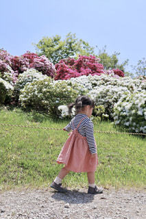 つつじが咲いてる道を歩く少女の写真・画像素材[2128067]
