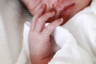 赤ちゃんの手クローズアップの写真・画像素材[2339699]