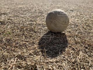 野球ボールの写真・画像素材[4069954]
