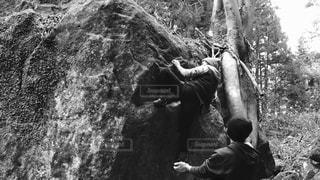岩好きの写真・画像素材[1818713]