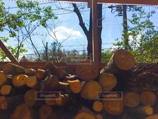 薪小屋の薪の写真・画像素材[2026599]