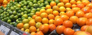 オレンジ売り場の写真・画像素材[1824952]