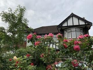 ハーフティンバー様式のロンドン郊外の家のガーデンの写真・画像素材[2323514]