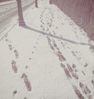 冬の写真・画像素材[234062]
