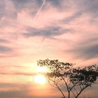 風景の写真・画像素材[87170]