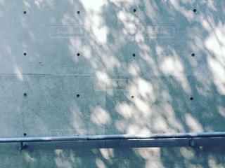 美しい木漏れ日の写真・画像素材[1829613]