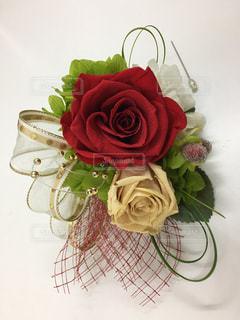 赤バラのコサージュの写真・画像素材[1829045]