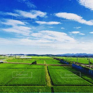 田んぼの綺麗な景色の写真・画像素材[1832506]
