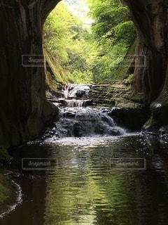 自然の写真・画像素材[63160]