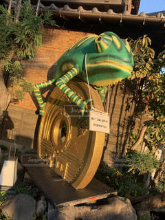 川越 小江戸 カエルと五円玉のオブジェの写真・画像素材[1843523]