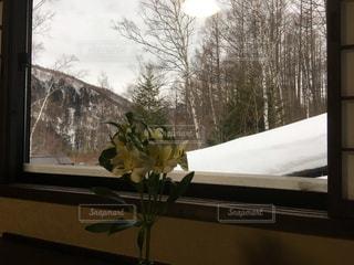 花の花瓶が窓の前で座っています。の写真・画像素材[1835804]