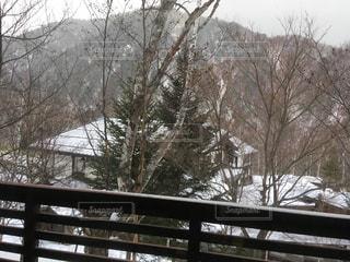 雪景色の写真・画像素材[1836933]