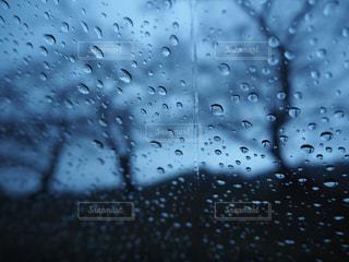 雨の写真・画像素材[1835546]