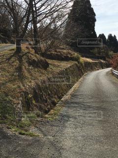 懐かしの田舎道の写真・画像素材[1837247]