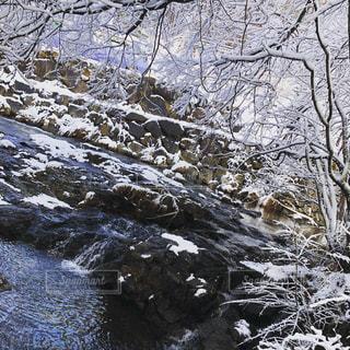 雪の滝の写真・画像素材[1837139]