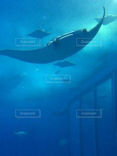 海の写真・画像素材[63964]