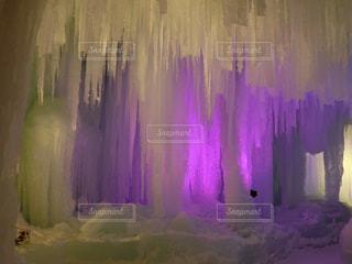 紫のつららの写真・画像素材[1849369]