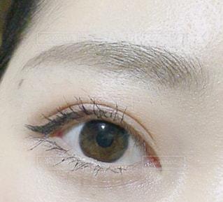 目のアップの写真・画像素材[1854514]
